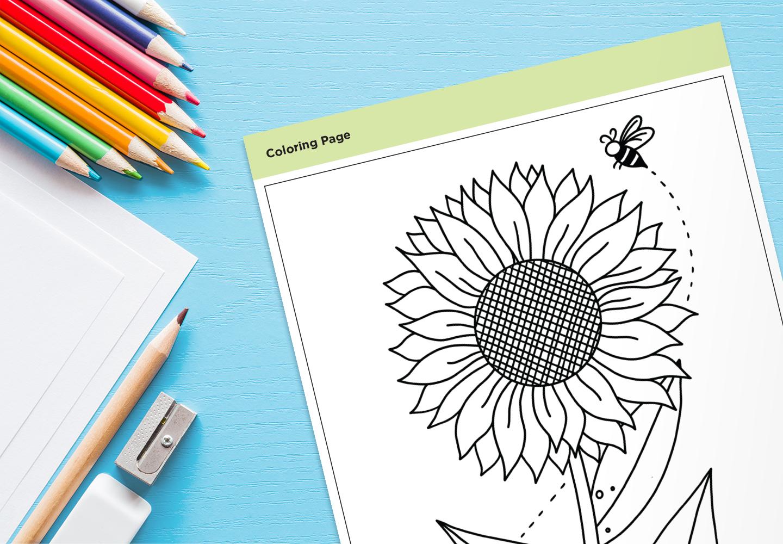 coloring-page-mockup